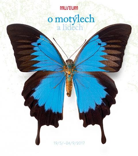 b_480_0_16777215_00_images_files_o-motylech_o-motylech-uvod.jpeg